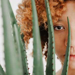 Proprietà dell'Aloe Vera