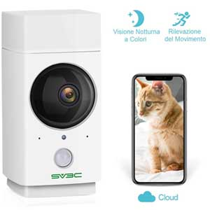 Regali di Natale per il gatto: telecamera interattiva