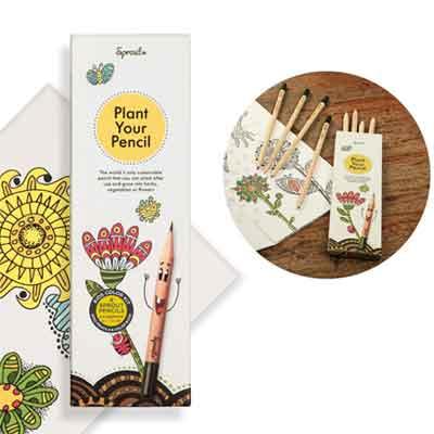 Colori ecologici per bambini: Sprout matite colorate